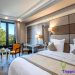 Best luxury hotels in Tbilisi